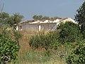 22-06-2017 Derelict farm, Terras Novas, Albufeira.JPG