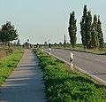 67125 Dannstadt-Schauernheim, Germany - panoramio (1).jpg