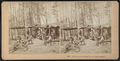 A Home in the woods for me, Adirondacks, by Kilburn Brothers.png