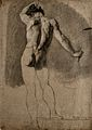 A standing male nude seen from the rear. Black chalk drawing Wellcome V0049027.jpg