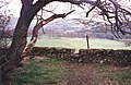A stile on the Southern Upland Way above Galashiels - geograph.org.uk - 65124.jpg