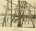 A voice from the Congo - comprising stories, anecdotes, and descriptive notes (1910) (14596999978).jpg