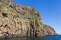Acantilados de Heimaey, Islas Vestman, Suðurland, Islandia, 2014-08-17, DD 027.JPG