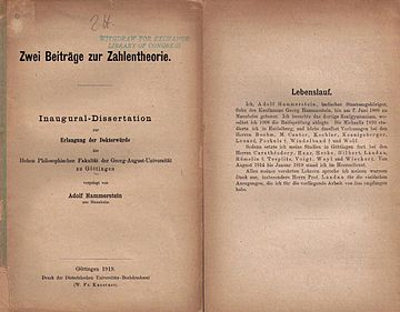 Adolf Hammerstein Wikipedia