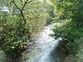 Afon Lwyd downstream from Town Bridge, Pontypool - geograph.org.uk - 2392749.jpg