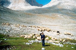Yörüks - Yörük shepherd in the Taurus Mountains in 2002.
