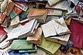 Alicia Martin Biografias - Cascade of books (525385519).jpg