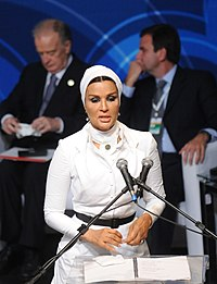 Alliance of Civilizations Forum Annual Meeting Brazil 2010 - 16.jpg