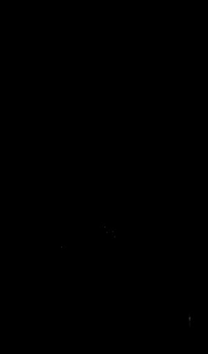 Polylysine - Structure of α-polylysine