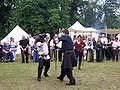 Altstadtfest 2009 27.JPG