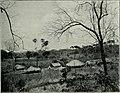 Am Tendaguru - Leben und Wirken einer deutschen Forschungsexpedition zur Ausgrabung vorweltlicher Riesensaurier in Deutsch-Ostafrika (1912) (17542760394).jpg