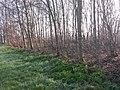 Amstelveen, Netherlands - panoramio (51).jpg
