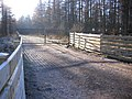An entrance to Greystoke Forest. - geograph.org.uk - 114474.jpg