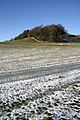 An iced field near Old Broadmeadows - geograph.org.uk - 1138725.jpg