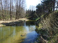 Ancia river.JPG