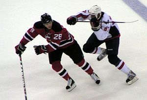 Donald Brashear - Brashear (right) delivering a cross-check to the New Jersey Devils' Anssi Salmela