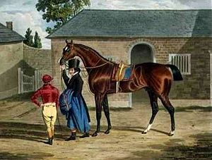 Antonio (horse) - Antonio', the Winner of the Great St. Leger at Doncaster, 1819 by John Frederick Herring, Sr.