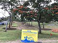 Anzac Park Avenue of Honour, Toowong, Queensland 02.jpg
