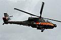 Apache (5089444095).jpg