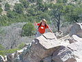 Approaching summit of Emory Peak DSC03822 ad.JPG