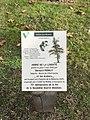 Arbre de la liberté, 70e anniversaire de la fin de la Seconde Guerre mondiale (Villefranche-sur-Saône) - plaque.JPG