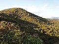 Armenia. Nature (2161525121).jpg