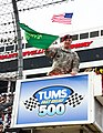 Army Sgt. 1st Class Matthew Solomon, an operations sergeant for XVIII Airborne Corps, practices waving the starting flag at the Tums Fast Relief 500 NASCAR race at Martinsville Speedway, Va., Oct. 28, 2012 121028-A-ZZ999-006.jpg