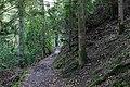 Around Geroldsau Waterfall 2020-03-13 07.jpg