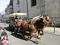 Attelage de chevaux comtois de Besançon 02.jpg