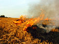 Autumn burn 2.jpg