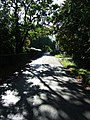 Autumn shade - geograph.org.uk - 588324.jpg