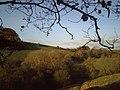 Autumn sunshine - geograph.org.uk - 667681.jpg