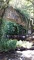 Avallon - Cousin le Pont - Arche.jpg