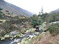 Avonbeg River in Glenmalure, Co. Wicklow - geograph.org.uk - 1217203.jpg