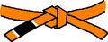 BJJ Orange Belt.PNG