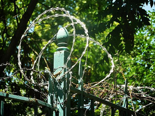 Barbed wire on the fence (1).jpg