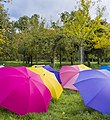Barrington Court Umbrellas (5212459637).jpg
