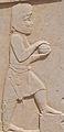 Bas Relief of Tribute Bearer, Persepolis, Iran (4693784693).jpg
