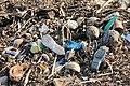 Beach of bantayan 2017 garbage.jpg