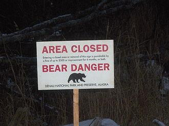 Bear danger - Bear danger closure sign of the type used in Denali National Park, Alaska.