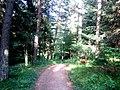Bench, Stepanavan Dendropark - panoramio.jpg