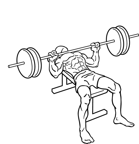 File:Bench-press-2.png