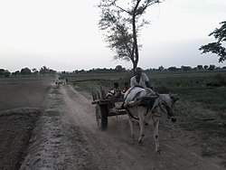 Bhidauni - Wikipedia