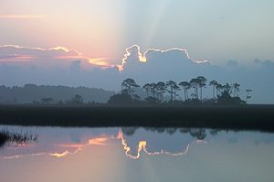 Florida Scenic Highways - Image: Big Bend Scenic Byway Florida Primary Photo