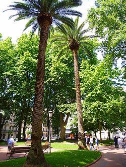 Jardines de albia wikipedia la enciclopedia libre - Jardines de bilbao ...