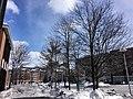 Binghamton, NY, USA - panoramio (6).jpg