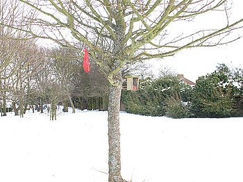 English: Bird feeders in the snow Someone has ...