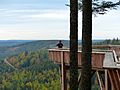 Black Forest- Ellbachsee lookout point (10561926475).jpg