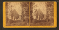 Blanford Church, built 1729, Petersburg, Va, from Robert N. Dennis collection of stereoscopic views.png