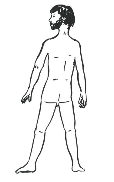 http://upload.wikimedia.org/wikipedia/commons/thumb/f/f7/Blank-man-back.jpg/376px-Blank-man-back.jpg